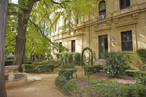 Jardín Botánico de la Facultad de Derecho de Granada.