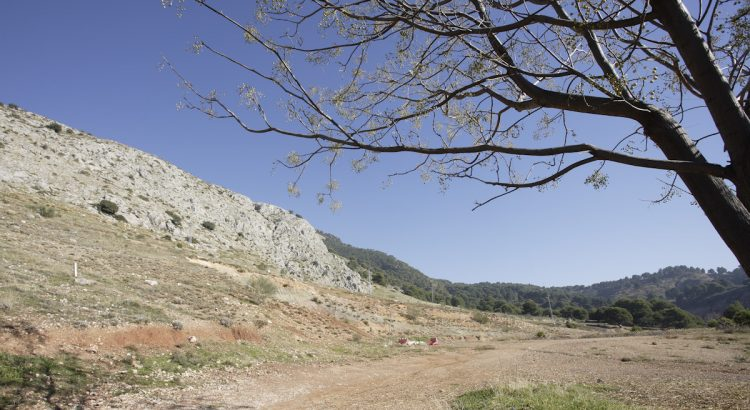 Colorado Hill in Alfacar (area of the search for the body of García Lorca), in front of the Pepino farmhouse.