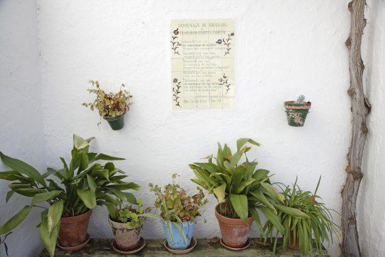 Rincón del patio de los caseros de la familia de García Lorca en Valderrubio.