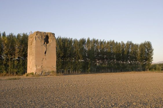 Torre de Romilla y Soto de Roma