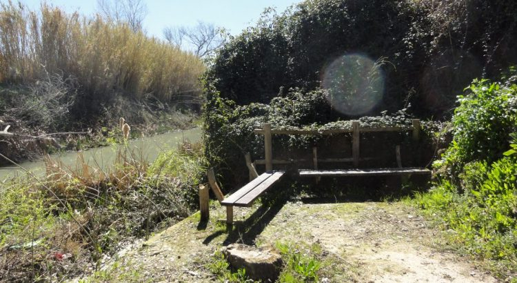 Paraje de la Fuente de la Teja.