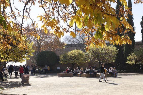 La plaza de los Aljibes está dentro del recinto de la Alhambra de Granada, y en 1922 se celebró el primer Concurso de Cante Jondo a iniciativa de personalidades e intelectuales  de Granada, entre ellos el poeta Federico García Lorca y el compositor Manuel de Falla.