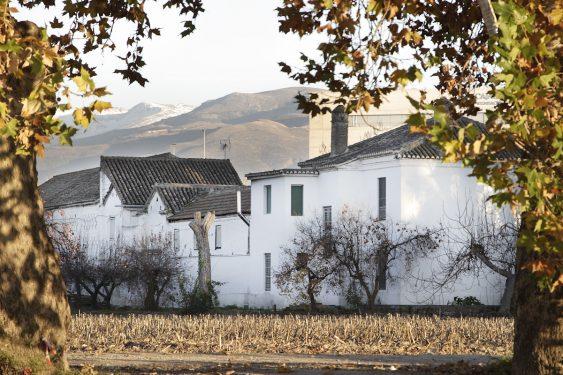 Huerta del Tamarit, which belonged to Clotilde García Picossi, Federico García Lorca's cousin. Back of the two houses: main and caretakers'.