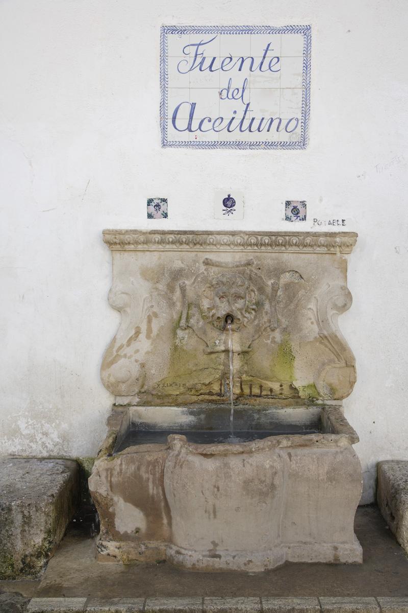 Fuente del Aceituno, situada en la parte trasera de la ermita de San Miguel Arcángel.